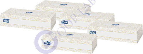 MOUCHOIR 100F TORK lot de 5 boites